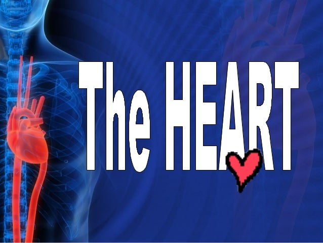 The Heart Video  VR SCI 040