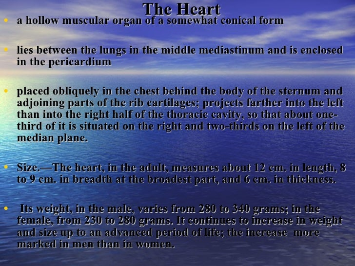 The Heart And Great Vessels Slide 2