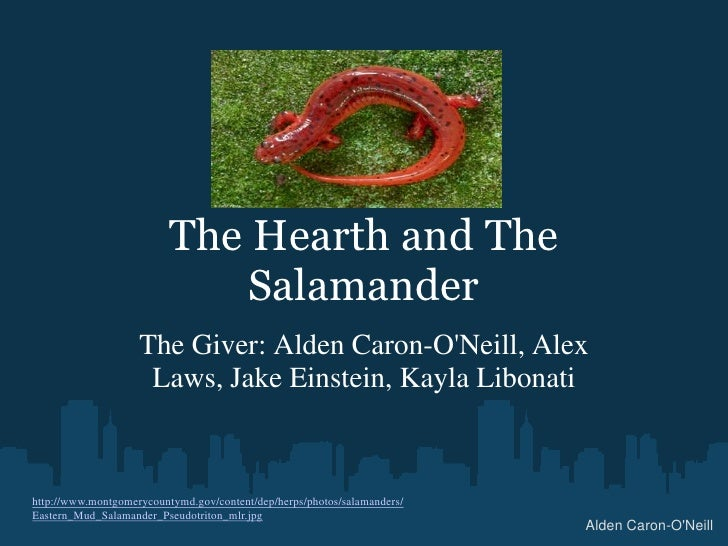 The Hearth and The Salamander<br />The Giver: Alden Caron-O'Neill, Alex Laws, Jake Einstein, Kayla Libonati<br />http://ww...