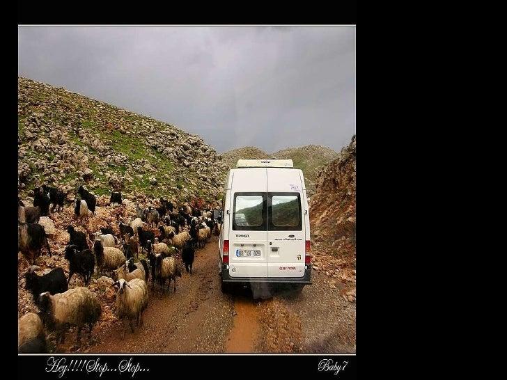 Going to Mount Nemrut