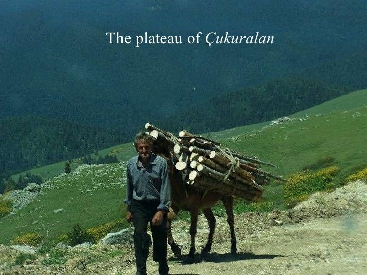 The  plateau  of  Çukuralan