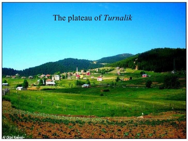 The  plateau  of  Turnal i k
