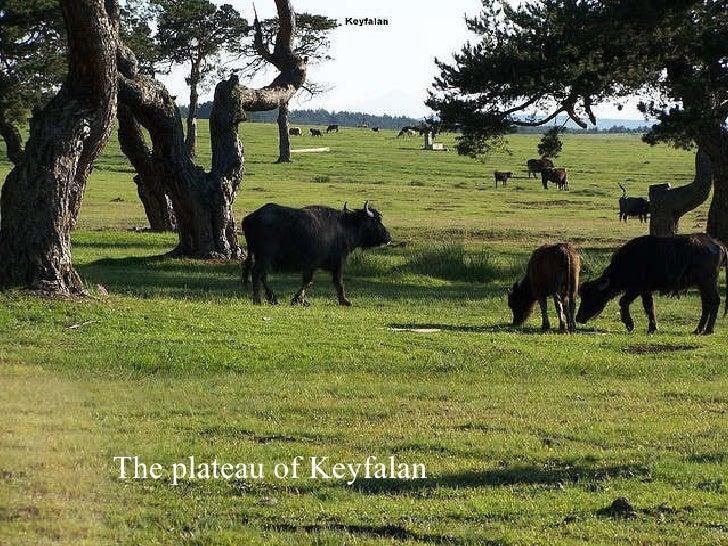 The  plateau  of   Keyfalan