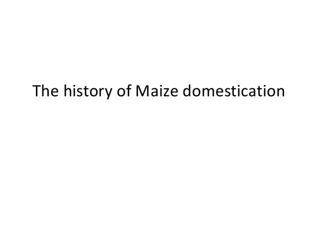 The history of Maize domestication