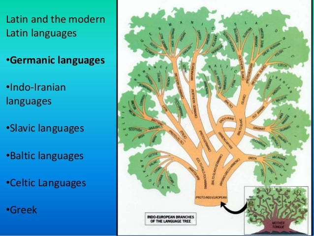 the english language and the contemporary Definition of contemporary written for english language learners from the  merriam-webster learner's dictionary with audio pronunciations, usage  examples,.