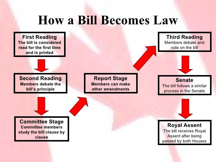 lawmaking process in the parliament Shows step by step the legislative process in the new zealand parliament introduction and first reading parliaments receive the proposed law or bill, from the required state institution through.