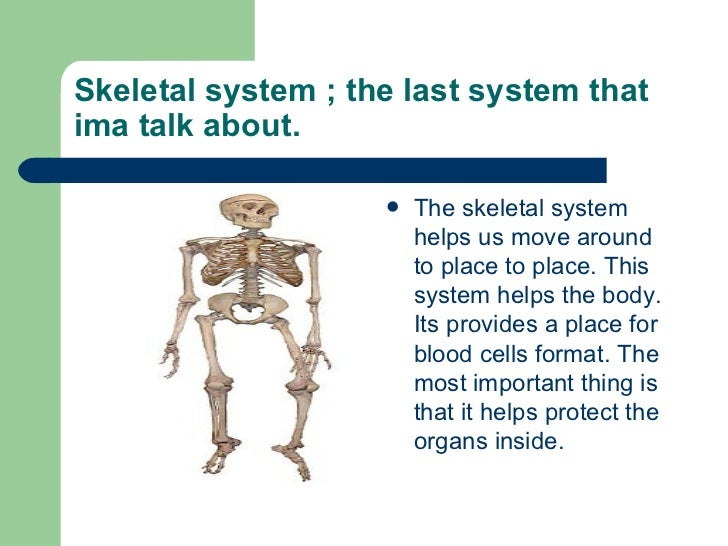 the important parts and functions of the skeletal system The functions of the skeletal system your brain helps you think, your lungs help you breathe, and your heart circulates blood all over the body to give you life.