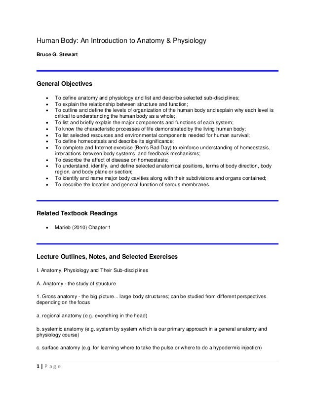 Organizational issues in the introduction of