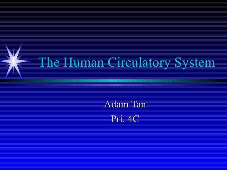 The Human Circulatory System Adam Tan Pri. 4C