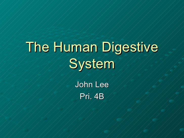 The Human Digestive System John Lee Pri. 4B