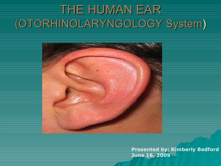 THE HUMAN EAR (OTORHINOLARYNGOLOGY System ) Presented by: Kimberly Bedford June 16, 2009