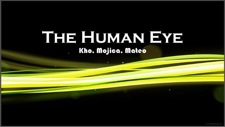 The Human Eye   Kho, Mojica, Mateo