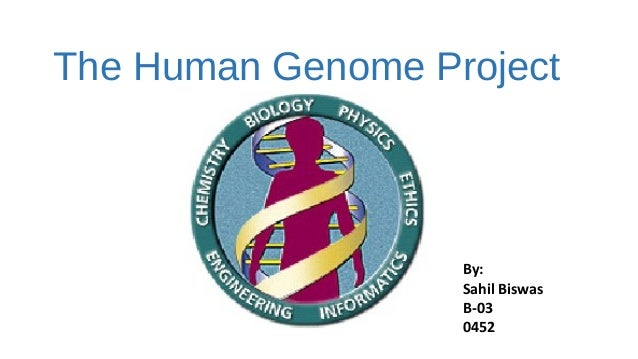 essay genome human project The primary aim of the human genome project was to identify and map all the dna pairs there are many applications of genome research, namely, bio technology, bio medical research, molecular medicine, dna forensics, agriculture, livestock breeding and bio-processing.