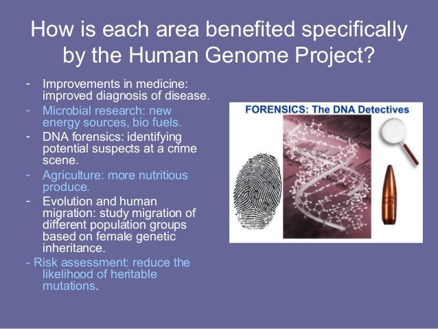 the effects of human genome project on moral standards of the society The progress of the human genome project is still unknown because the human genome project was finished the human genome project what is the effect of the knowledge gained through the mapping of the human genome on society.