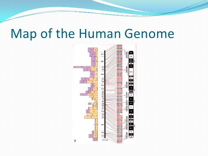 Human Genome Resources at NCBI