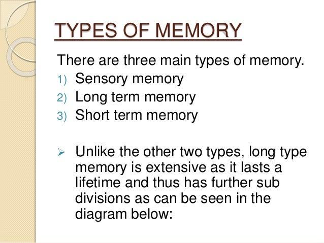The Human Memory