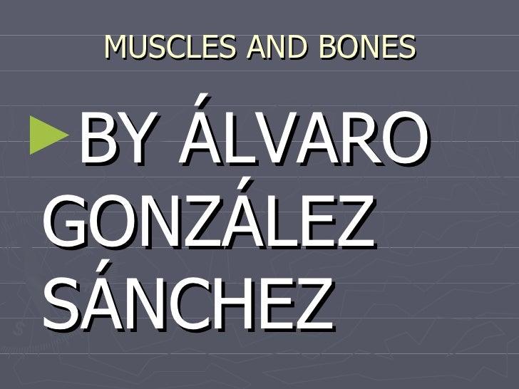 MUSCLES AND BONES►BYÁLVAROGONZÁLEZSÁNCHEZ