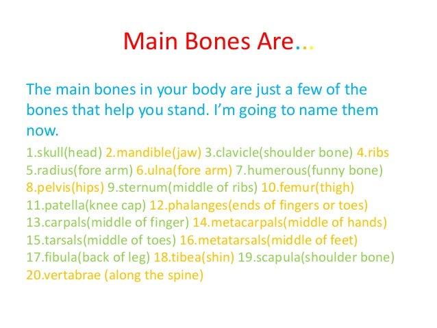 the human skeleton project, Skeleton
