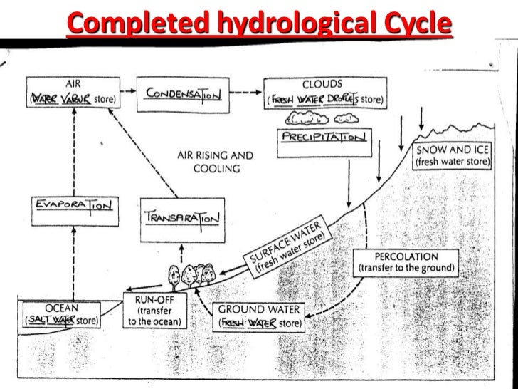 Diagram Of Hydrologic Cycle Residential Electrical Symbols