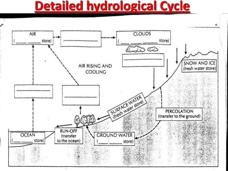 the hydrological cycle
