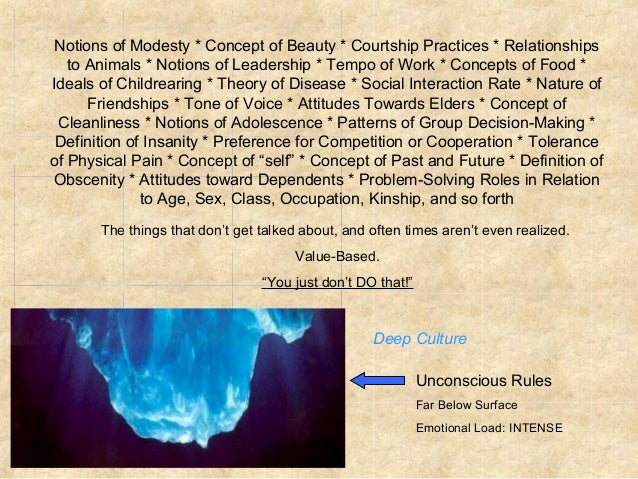 elective 1 the iceberg model of culture