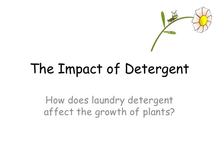 The Impact of Detergent    How does laundry detergent   affect the growth of plants?