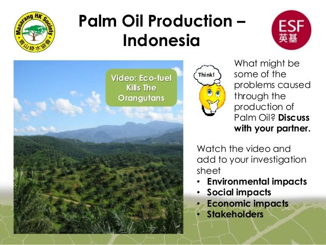 enviromental impact of palm oil Environmental impacts of oil palm –practical considerations in defining sustainability for impacts on the air, land and water  agriculture has had an impact on the.