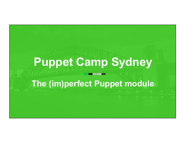 Puppet Camp Sydney The (im)perfect Puppet module