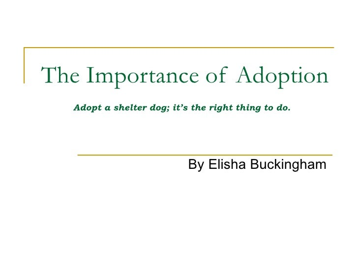 The Importance of Adoption Adopt a shelter dog; it's the right thing to do.   By Elisha Buckingham