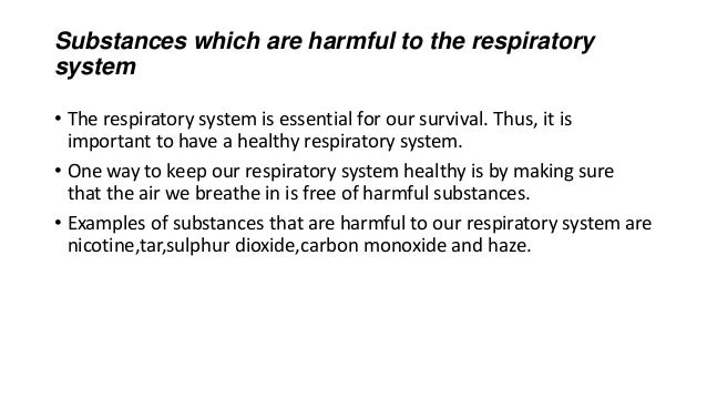 the importnce of a healthy respiratory Find out more about the lungs and breathing process  oxygen is the most important for keeping us alive because body cells need it for energy and growth  the health of your lungs and respiratory system and cause respiratory problems.