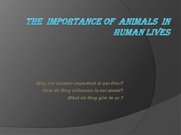 The  importance of  ANIMALS  in human lives <br />-Why are animals important in our lives?<br />-How do they influence in ...