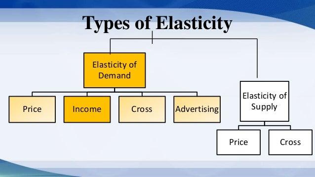 importance of elasticity in economics