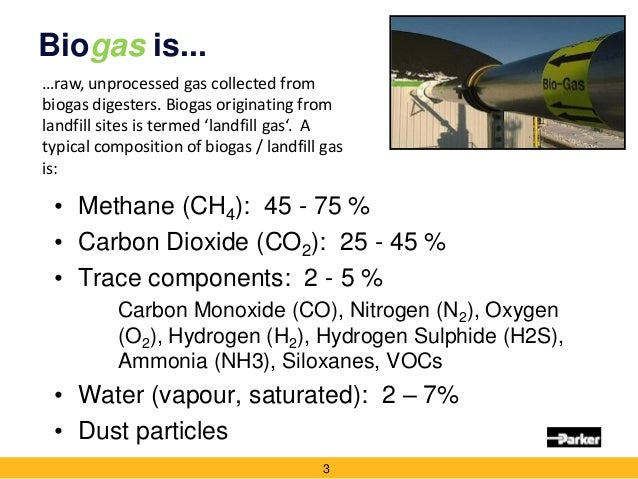 importance of biogas