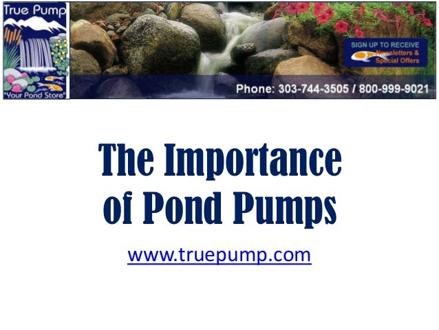 The Importanceof Pond Pumps www.truepump.com