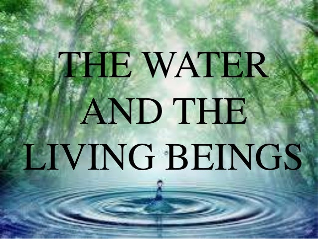 why is water important in living Water is one of the main constituents on earth two thirds of the earth is covered  by water approximately 75 percent of the human body is formed of water.