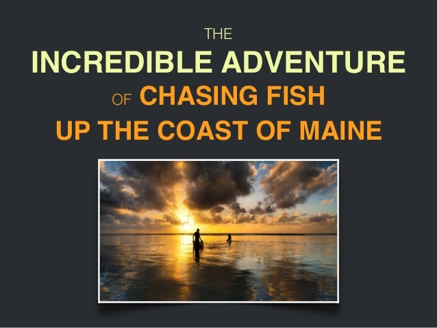 THE UP THE COAST OF MAINE INCREDIBLE ADVENTURE! OF CHASING FISH