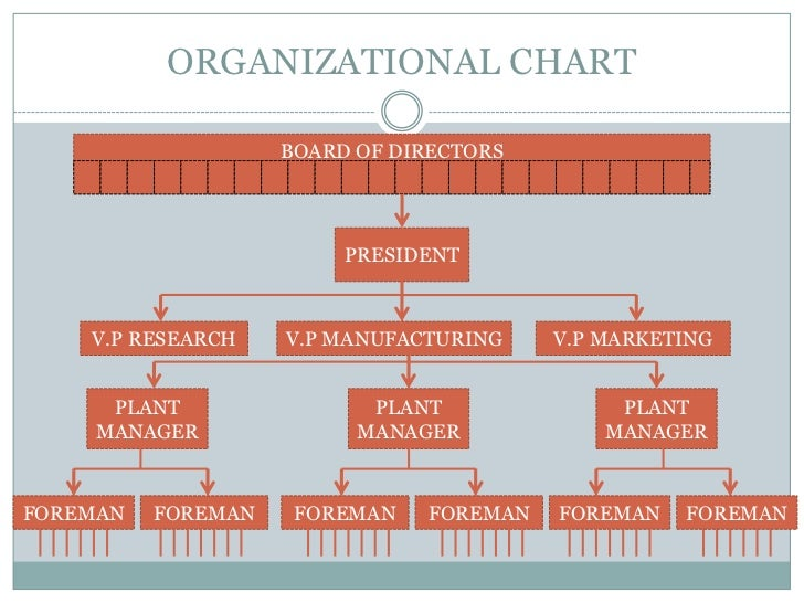 The Individual In The Organization