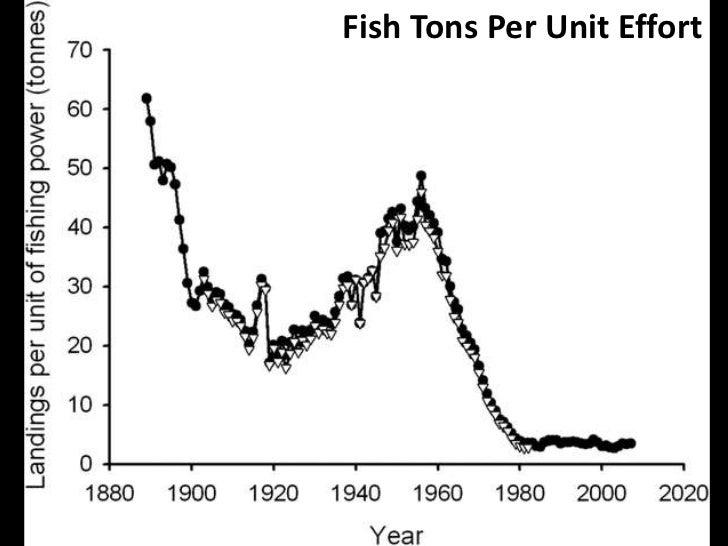 Fish Tons Per Unit Effort<br />
