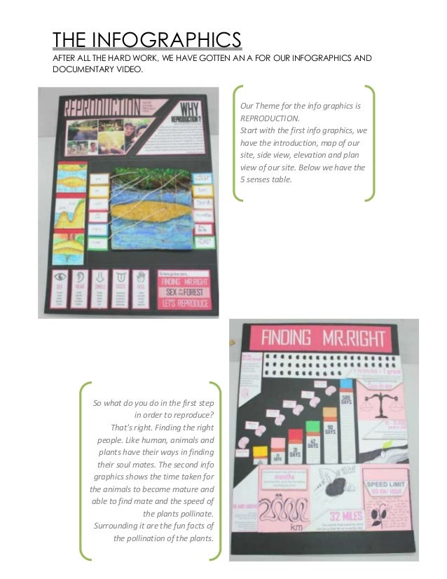 THE INFOGRAPHICS AFTER ALL THE HARD WORK, WE HAVE GOTTEN AN A FOR OUR INFOGRAPHICS AND DOCUMENTARY VIDEO. So what do you d...