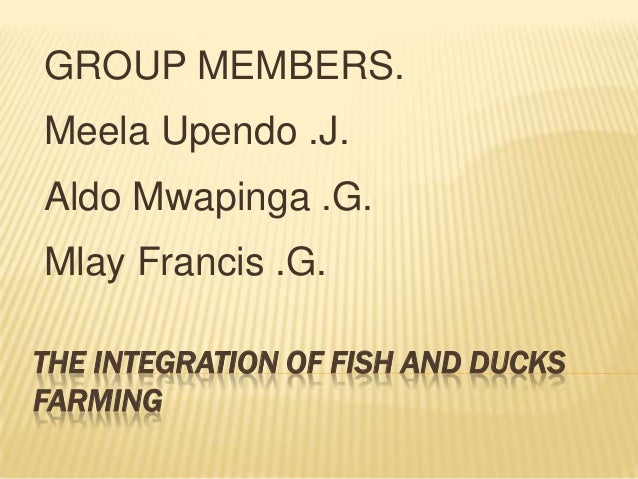 GROUP MEMBERS.Meela Upendo .J.Aldo Mwapinga .G.Mlay Francis .G.THE INTEGRATION OF FISH AND DUCKSFARMING