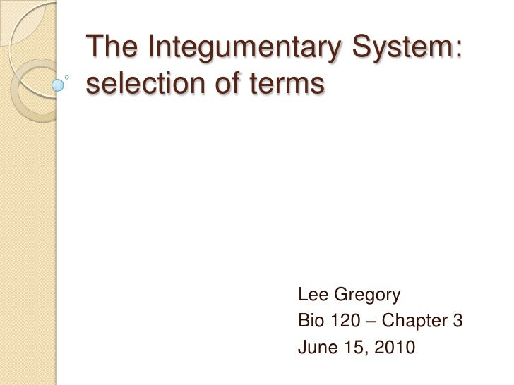 The Integumentary System:selection of terms<br />Lee Gregory<br />Bio 120 – Chapter 3<br />June 15, 2010<br />