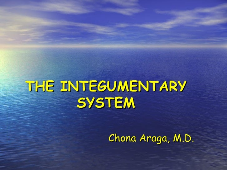 THE INTEGUMENTARY      SYSTEM        Chona Araga, M.D.