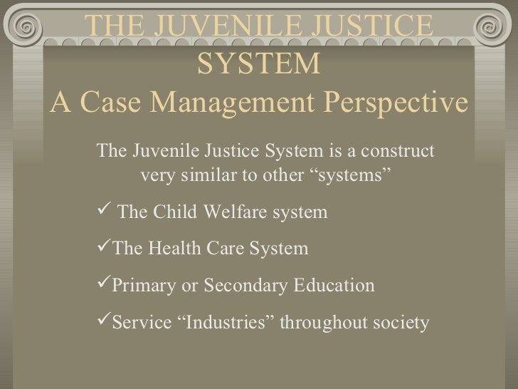 THE JUVENILE JUSTICE SYSTEM A Case Management Perspective <ul><li>The Juvenile Justice System is a construct very similar ...