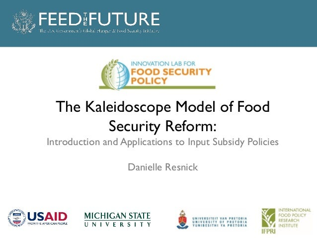 The Kaleidoscope Model of Food Security Reform: Introduction and Applications to Input Subsidy Policies Danielle Resnick