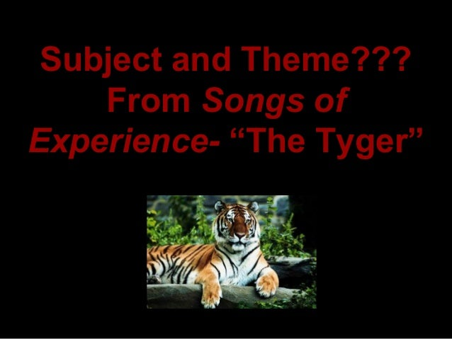 the tyger and the lamb A critical reading of an iconic poem 'the tyger' is arguably a short analysis of william blake's duality between the lamb and the tiger as being.