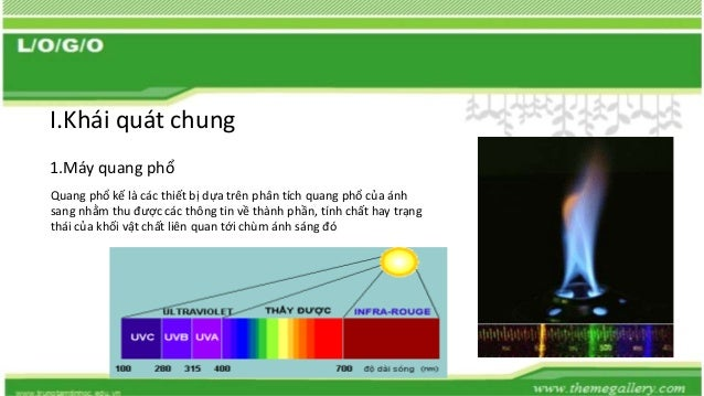 mayquangpho Slide 3