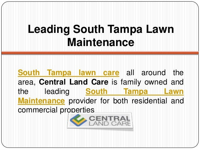 Lawn service tampa south tampa lawn maintenance for Lawn care and maintenance