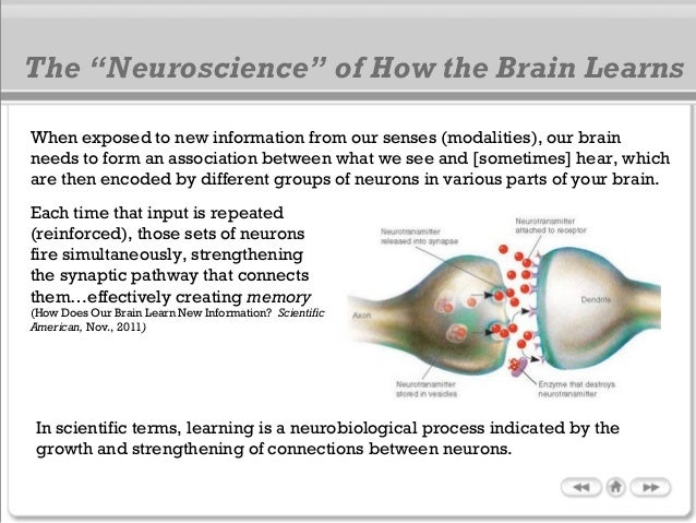 When exposed to new information from our senses (modalities), our brain needs to form an association between what we see a...