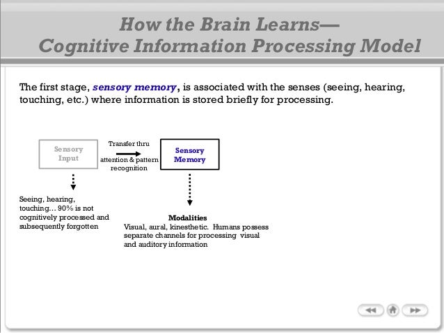 The first stage, sensory memory, is associated with the senses (seeing, hearing, touching, etc.) where information is stor...