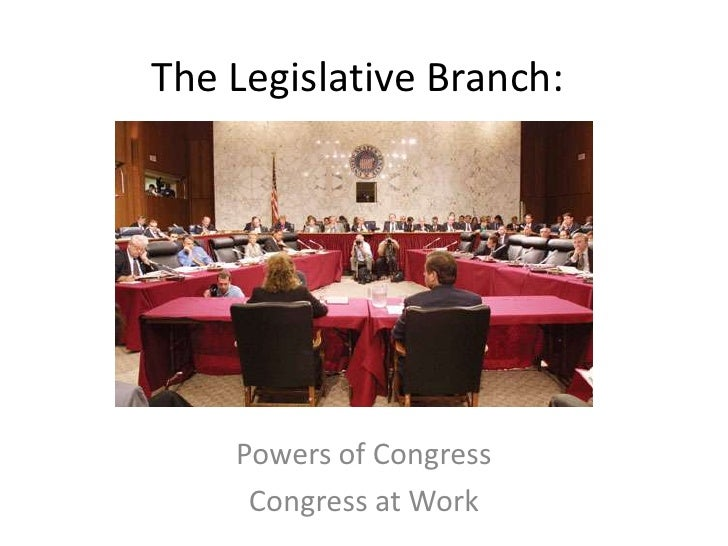 The Legislative Branch:<br />Powers of Congress<br />Congress at Work<br />